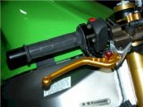 "CRG Clutch & Brake Set - ""Shorty"" - GOLD   CRG-SGLD"