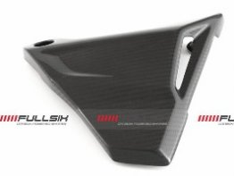 CDT - BMW -  R1200 GS / Adventure '13-14 -Carbon Tail Insert Cover - Right Side  212968, 212969