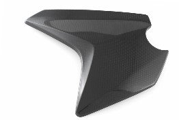 CDT - BMW - F800 GS Adventure  '13-15 -  Carbon Fairing Side Panel - Right   217748, 217749