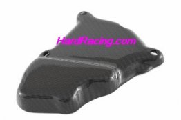 CDT - BMW - S1000RR '15-'16/S1000 R  '14-16  -Carbon Ignition Rotor Protection Guard  211112, 211113